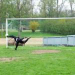 Fußballtore im Training variabel nutzen